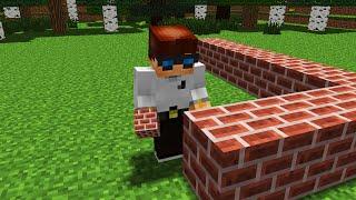 - First Building MrUnfiny Minecraft Animation