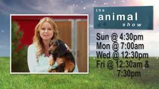 Animal Show Tune-In with Fiona Forbes