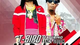 vuclip T-BIRD FT FANCY GADAM - NI DOLA NI (Official Audio)
