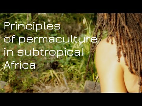 Principles of permaculture in subtropical Africa