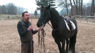 Francesco Vedani Equitazione - Tranquillizzare un cavallo impaurito 1 parte