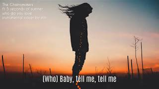 The Chainsmokers Who Do You Love ft. 5 Seconds of Summer Instrumental Cover Remake Karaoke Lyrics