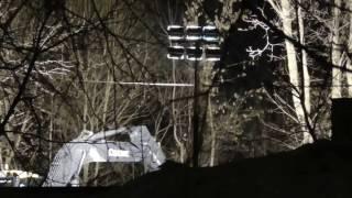 Кусково  Вырубка в ночь с 28  на 29 декабря 2016 г под прикрытием полиции