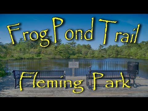 Frog Pond Trail - Sir Sandford Fleming Park. Halifax, Nova Scotia.