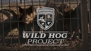 Wild Hog Research Project