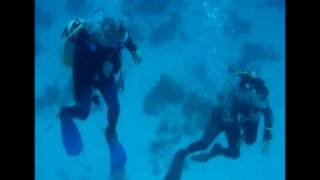 Mark and Stuart - Dive Buddies Gimme Dat Ding
