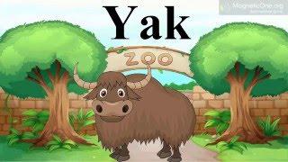 Урок 11 Англійська мова 1 клас. At the Zoo Частина 2