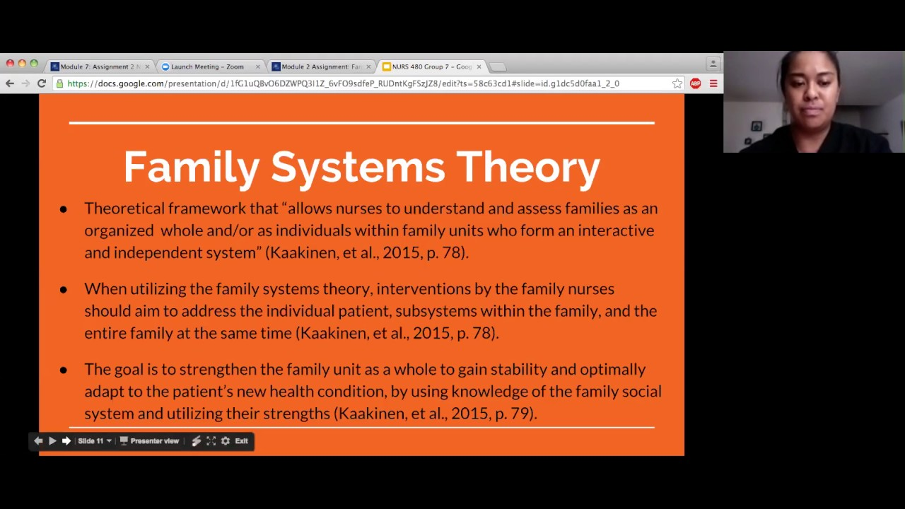 family systems theory nursing
