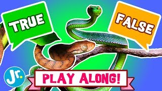 YOU PLAY GAME - SNAKES - TRUE or FALSE (INTERACTIVE!)