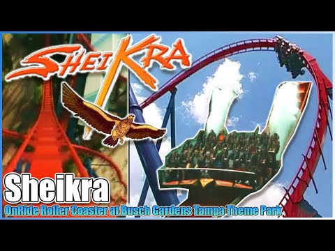 🦅SheiKra🎢our personal onride/offride movie on roller coaster🦁Busch Gardens Tampa Bay