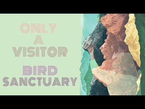 "Only A Visitor: ""Bird Sanctuary"" Mp3"