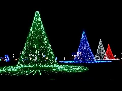 Let it go | Christmas lights | Coney island, Cincinnati