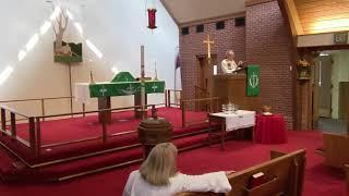 Seventh Sunday After Pentecost 2021-07-11