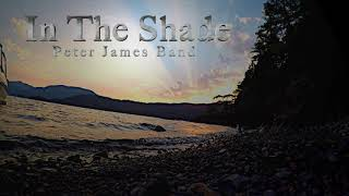 In The Shade lyric video Peter James Band