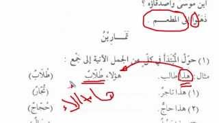 """Мединский курс. Том 1. Урок 13. Множественное число """"الجَمْعُ"""" [baytalhikma.ru]"""