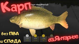 Русская рыбалка 4 РР4 озеро Янтарное КАРП без ПВА и СПОДА