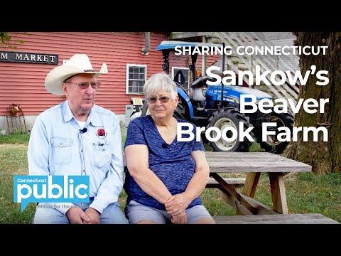 This Life Calls To ME: Sankow's Beaver Brook Farm