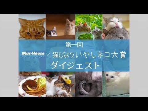 第一回 MacHouse x 猫びより いやしネコ大賞ダイジェスト