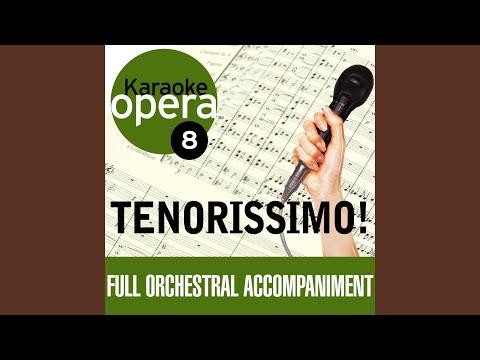 "Eugene Onegin: Lenski's aria ""Kuda, kuda"" - Andante espressivo (no vocals)"