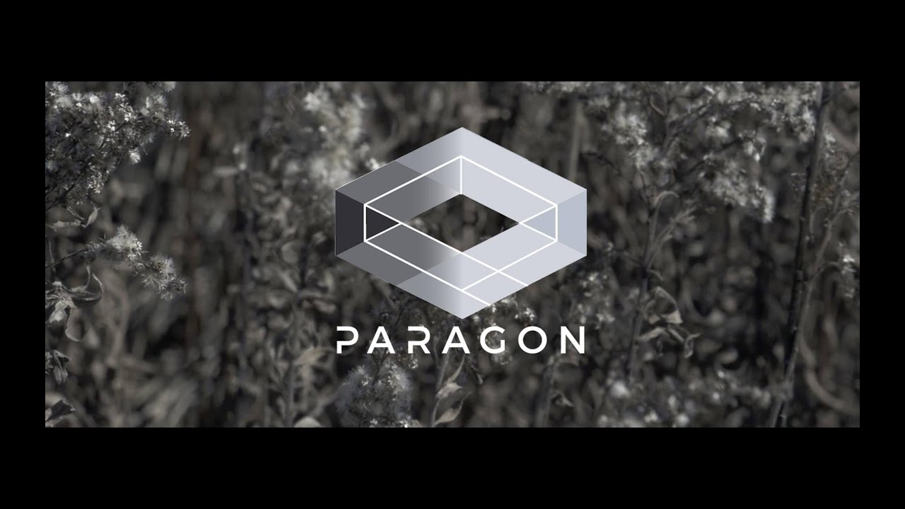 paragon how to show fps