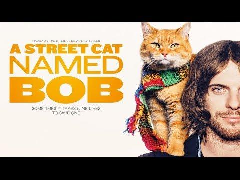 Street Cat named Bob - Wake me up when september ends