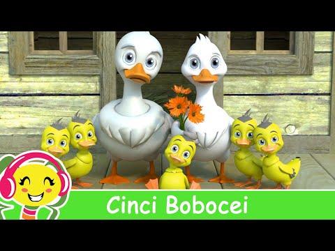 Cinci Bobocei - Cantece pentru copii cu ratuste - CanteceGradinita.ro