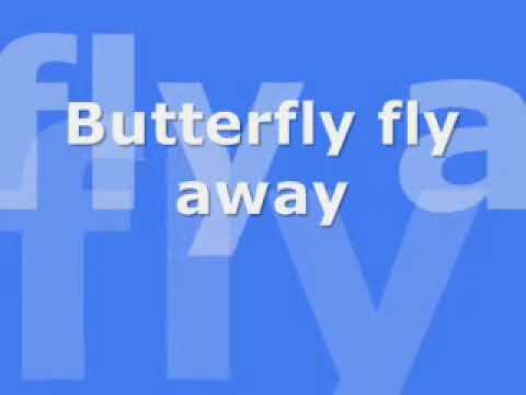 Miley Cyrus- Butterfly fly away