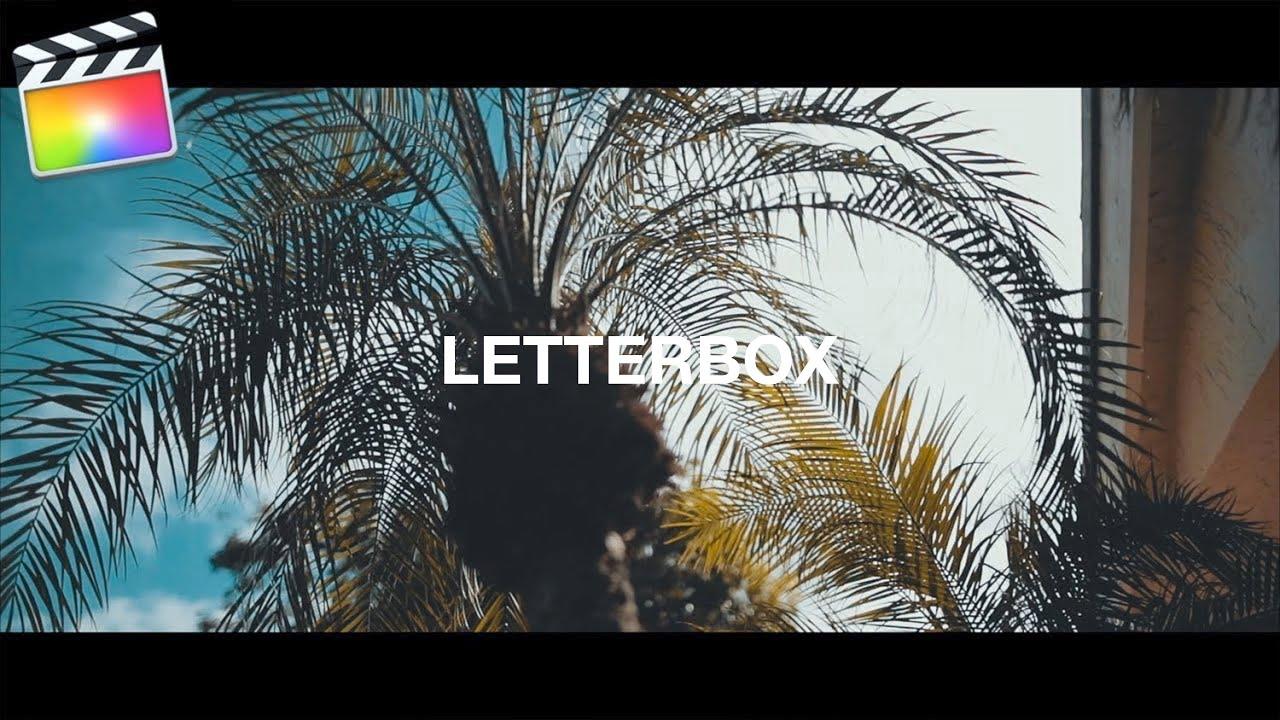 ボックス 映画 レター サイズ