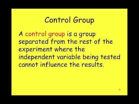 Experimental Controls and Variables