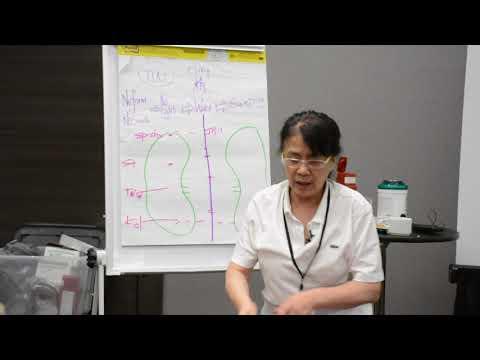 Kiiko Matsumoto: Kidney and San Jiao Theory Part II