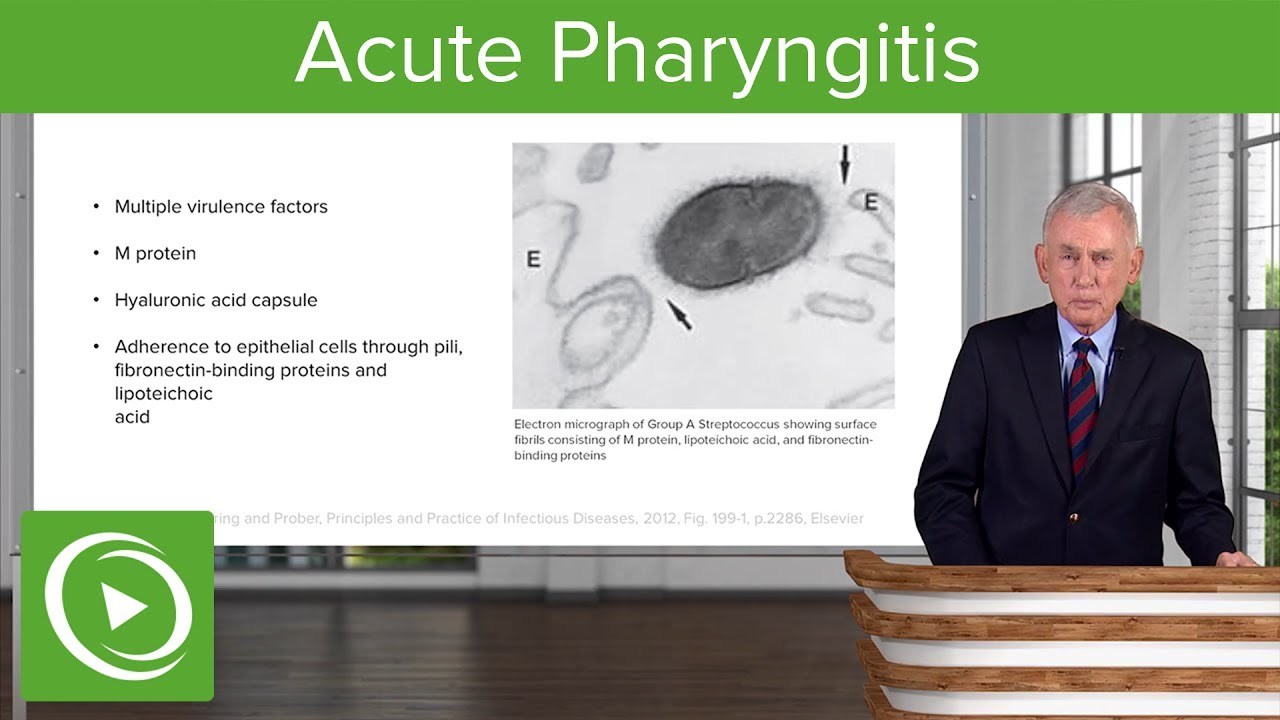 Acute Pharyngitis: Definition & Epidemiology – Infectious Diseases | Lecturio