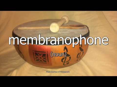 Membranophone - Words Unlimited