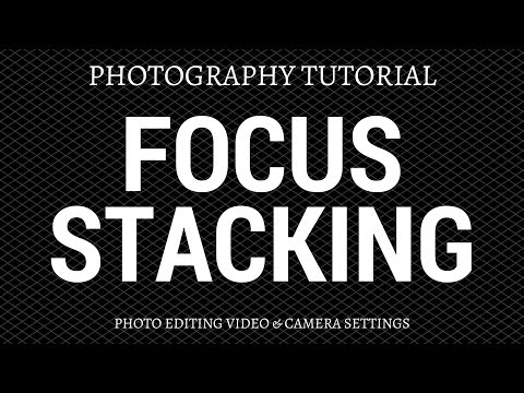 Focus Stacking Photography Tutorial - Photo Editing & Camera Technique