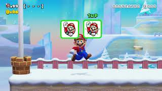 Super Mario Maker 2 🔧 Endless Challenge 192 - 208