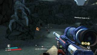 Borderlands PC - Killing skags with fire sniper