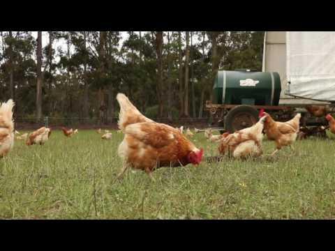 WA Frankland River Organic Farm