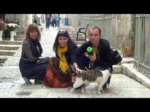 zevel знакомства в израиле