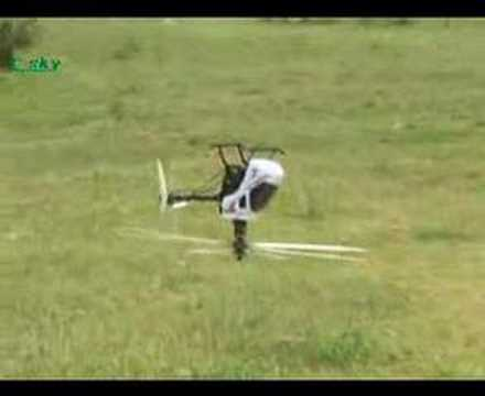 Esky Belt CP EK1H 6CH 3D RC Remote Control Helicopter CCPM