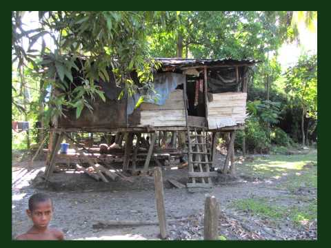 Anthropological fieldwork in Papua New Guinea, Part I: Moral and Scientific Considerations