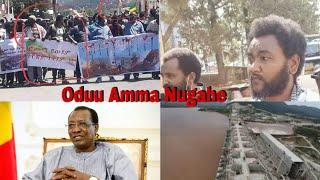 Oduu Belbeltuu || Hiriirri N. Amaaraa kan Oromoo irra fuulleffatu tahu Iccitii saaxilu fi Oduu biroo