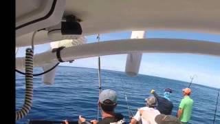 daytime swordfish leaping - West Atlantis CAnyin