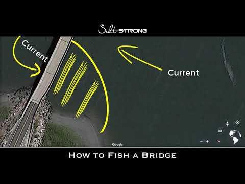 Bridge Fishing: Best Baits, Spots & More