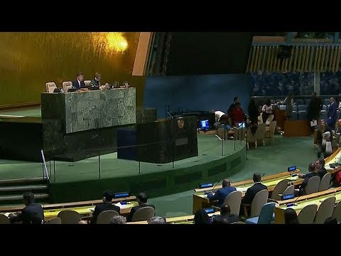 UN General Assembly votes against Trump