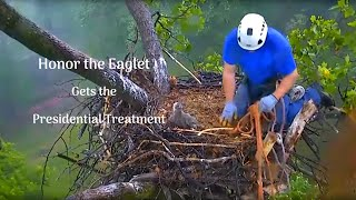 AMAZING Rescue of Baby Eagle Honor Gets the Presidential Treatment