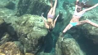 salt springs summer 2014