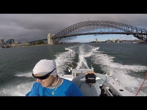 Fishing Sydney Harbour