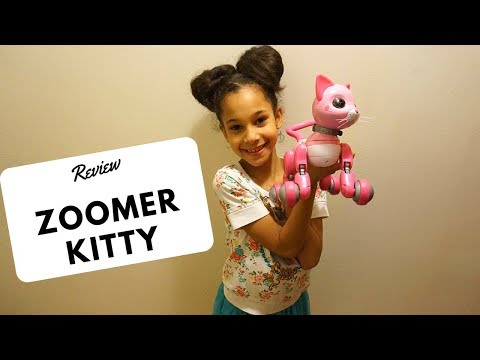 Playing With fun loving Zoomer Kitty Interactive Cat Bella review