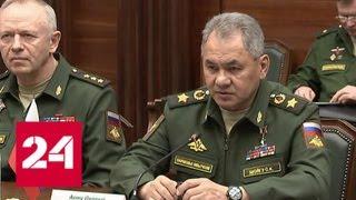 Удары США по Сирии нарушают стабильность и мешают возвращению мира в страну, заявил Шойгу - Россия…