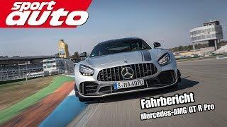 Mercedes-AMG GT R Pro - Fahrbericht | sport auto