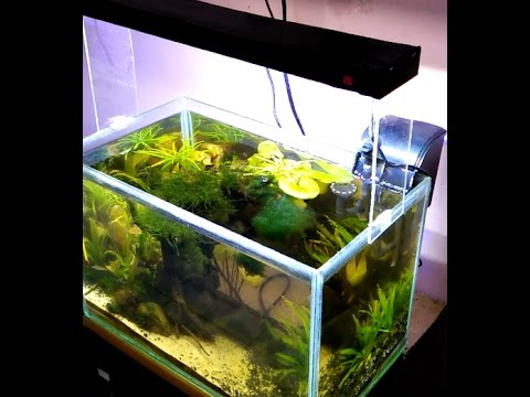 Membuat Led Aquascape Mudah Murah Hanya 15 Menit Tanpa Solder Bukan Bulb Youtube